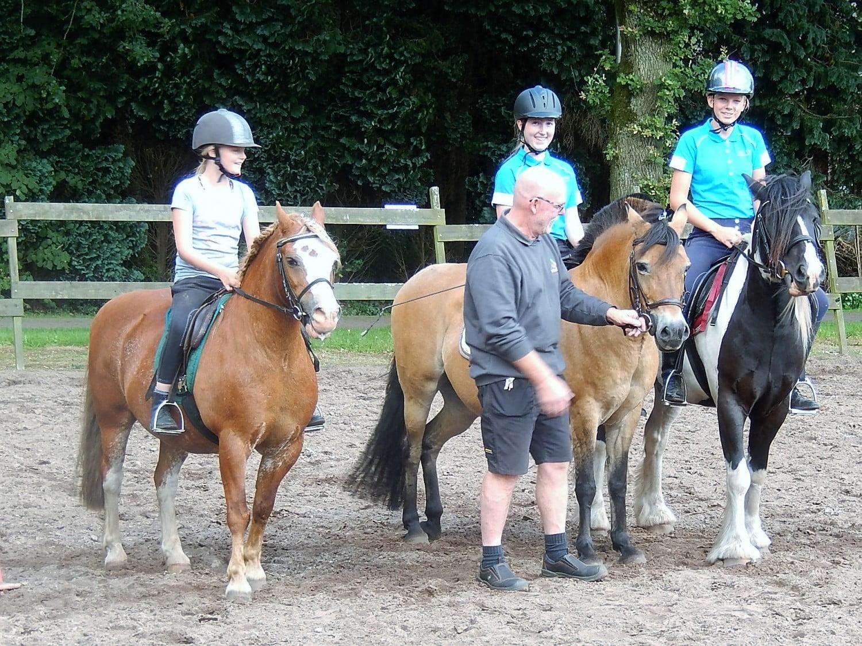 de rij pony's