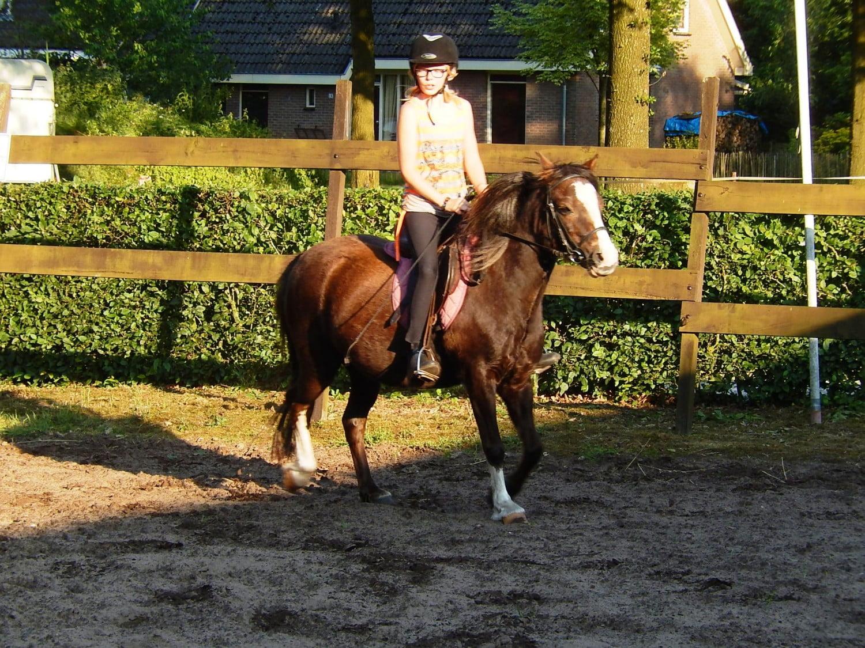 paarden vakantie 14